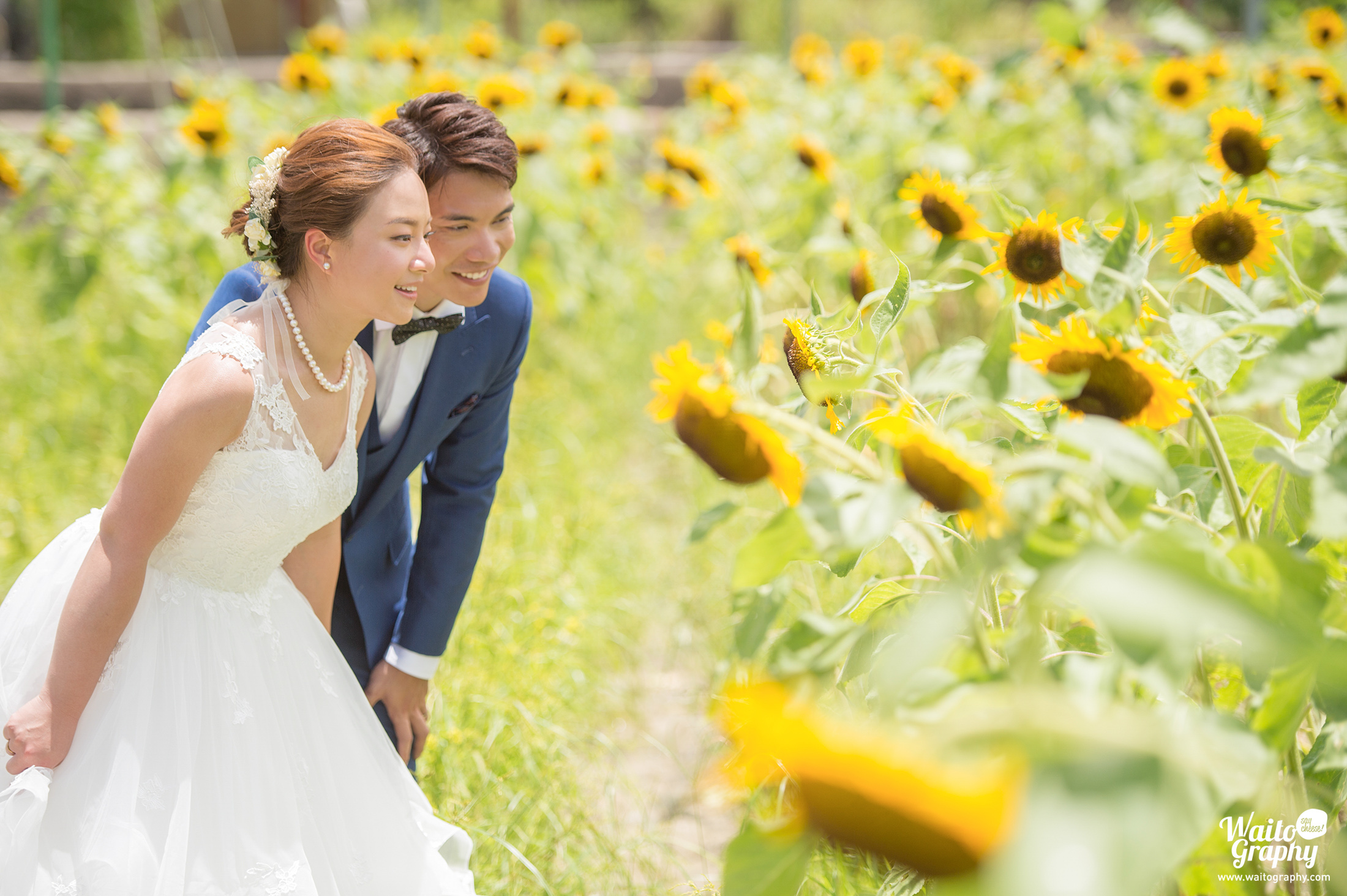 Natural HK pre wedding photo without any pose taken beside a sunflower field in Hong Kong